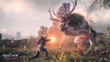 The Witcher 3 Wild Hunt combat screenshot